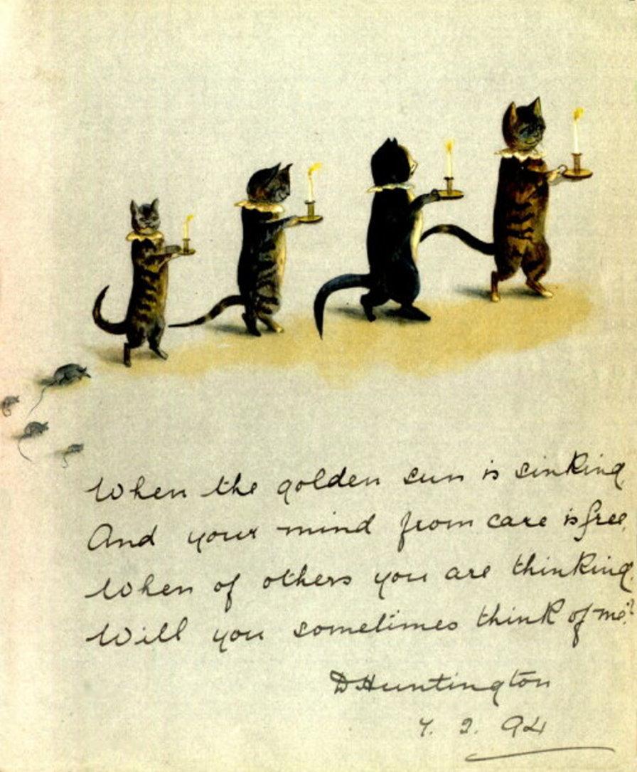 - catsbedtime
